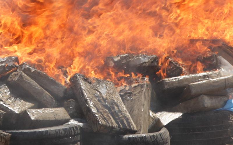 Dakhla: Destruction de plus de 7.000 kg  de résine de cannabis