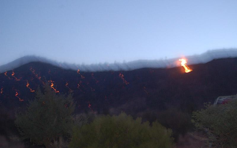 Deux incendies ravagent 100 ha  de forêts au niveau de la préfecture  de M'diq-Fnideq