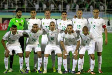Coupe du monde 2014 : Equipe d'Algérie