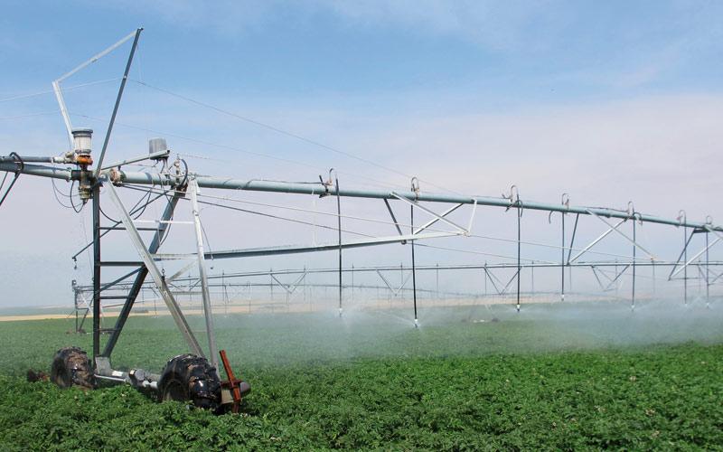 Pour la réalisation de 5 grands projets hydro-agricoles: 4 milliards de dirhams débloqués  pour Tanger-Tétouan-Al Hoceima