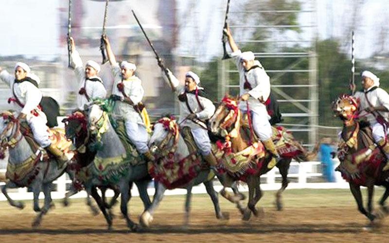 Salon du cheval d'El Jadida : Ça reprend bientôt !