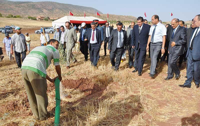 Lancée officiellement ce lundi dans le Gharb: La campagne démarre avec les premières pluies