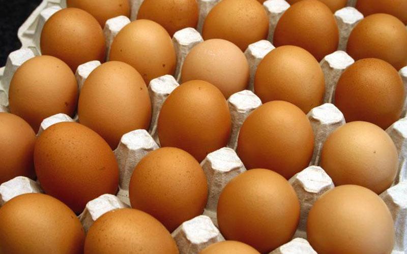 ANPO célèbre  la journée  mondiale  de l'œuf
