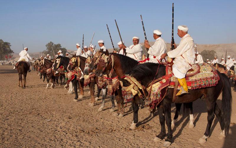 Salon du  cheval  d'El Jadida :  Le show commence