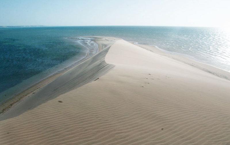 Dakhla: La région séduit les amateurs  du tourisme écologique