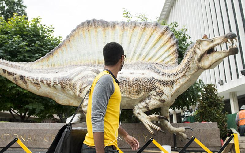 La National Geographic Society expose le spinosaurus découvert au Maroc