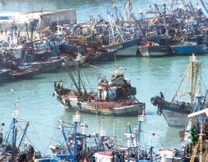 Pêche : l'accord avec l'UE approuvé