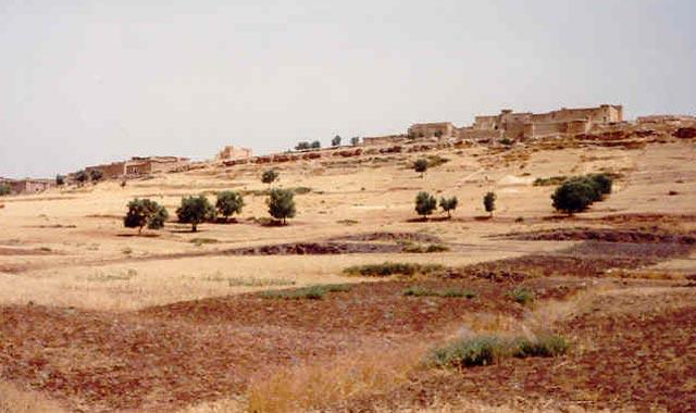 Lutte contre le changement climatique: La contribution du Maroc classée 3ème