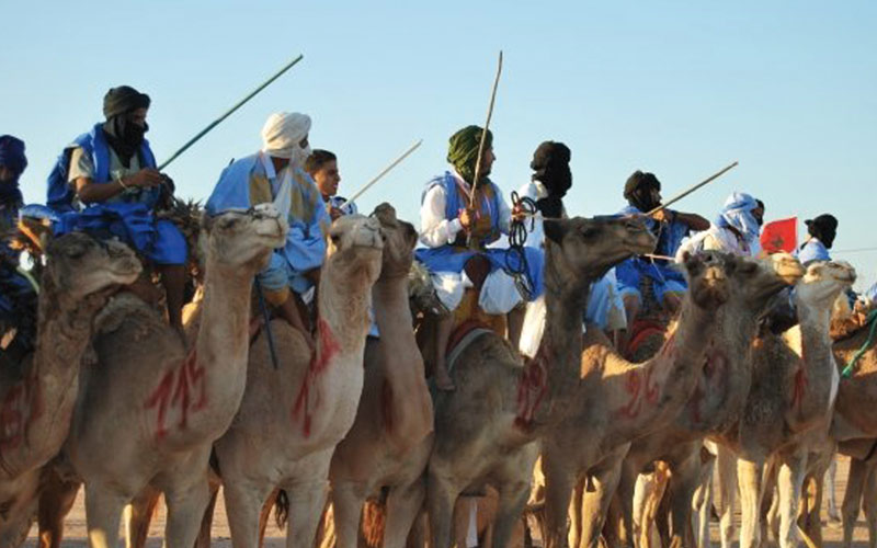 Provinces du Sud: Une stratégie pour développer  la filière cameline