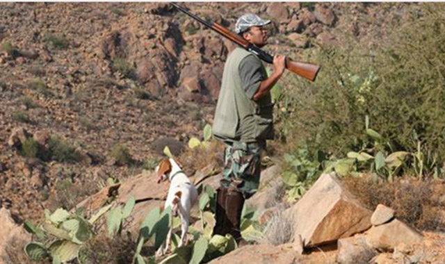 Souss-Massa-Drâa : 31 battues de sanglier organisées à fin septembre