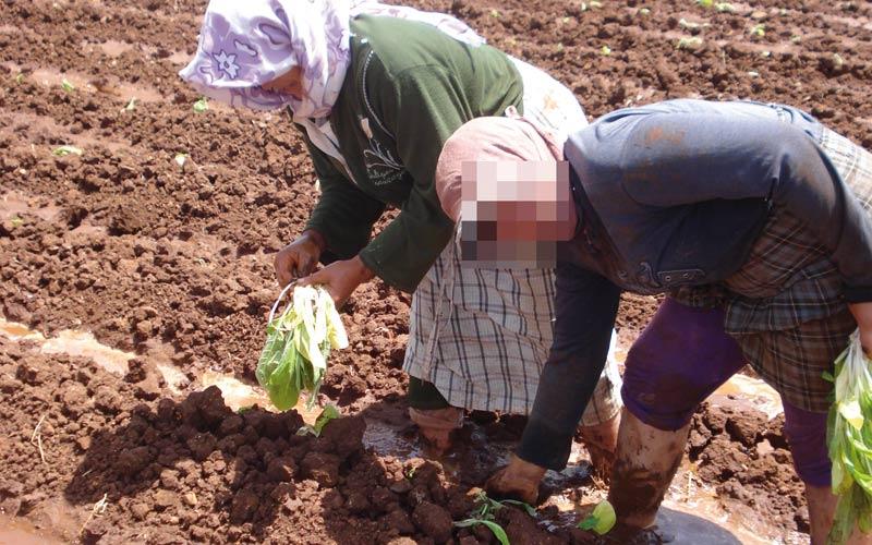 Les femmes actives défavorisées