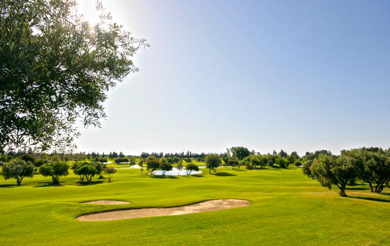 Golf : Le Maroc domine les championnats Arabes