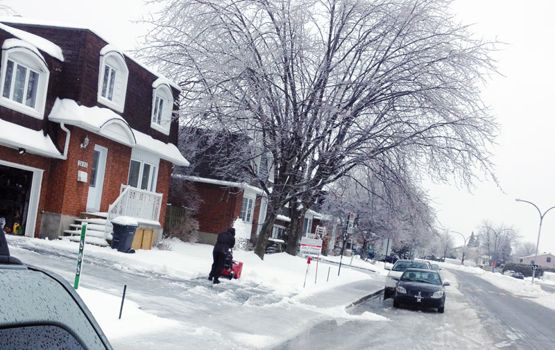 Les Marocains de Montréal: Le Québec oui, mais pas en hiver !