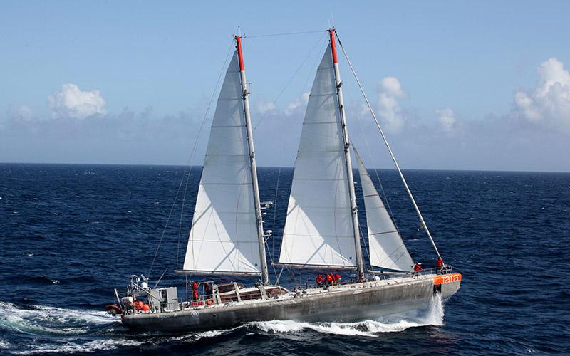 Tanger : L'expédition «Tara Méditerranée» fait escale du 1er au 6 novembre 2014
