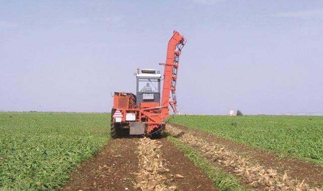 Tanger-Tétouan: Le FDA octroie plus de 107  millions DH aux agriculteurs