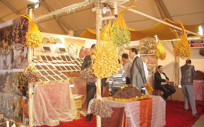 Coup de  projecteur  sur les dattes marocaines