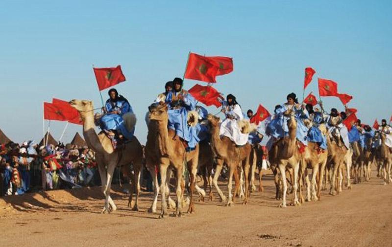 Course du dromadaire à Laâyoune: Le patrimoine sahraoui marocain valorisé