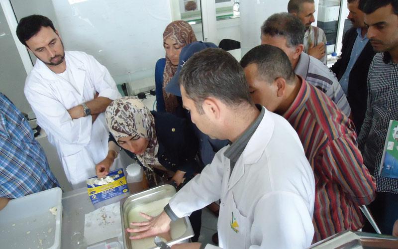 Tanger-Tétouan: Plus d'une vingtaine d'éleveurs formés  à la fabrication des produits laitiers