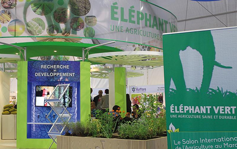 Biofertilisants : Une certification ISO pour Eléphant Vert
