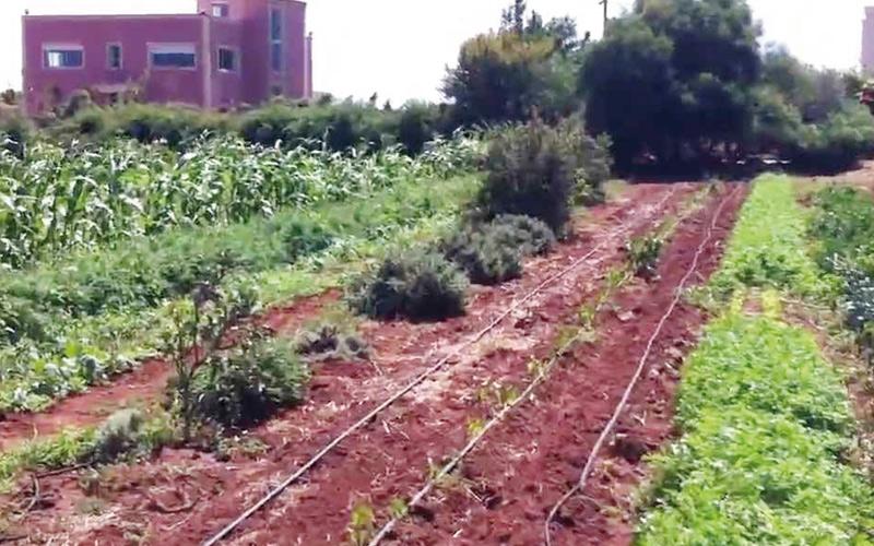 Inauguration d'une ferme pédagogique  à Rhamna: «Terre et  humanisme  Maroc» promeut l'agro-écologie