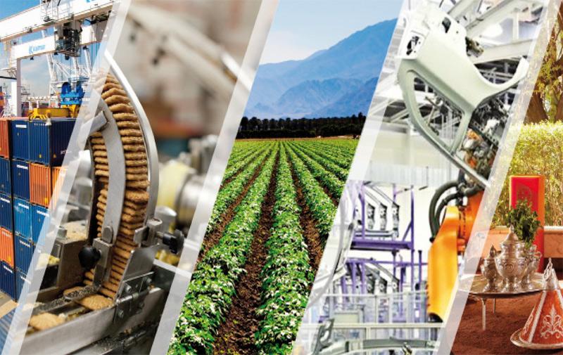 Croissance économique au quatrième trimestre 2015: Ce que prévoit le HCP
