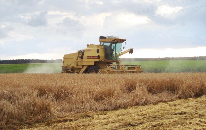 OBG : 2015,  l'année de l'agriculture