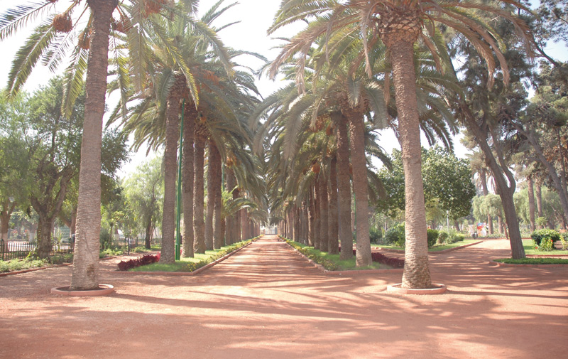 Casablanca: Le jardin Murdoch comme si vous y étiez…