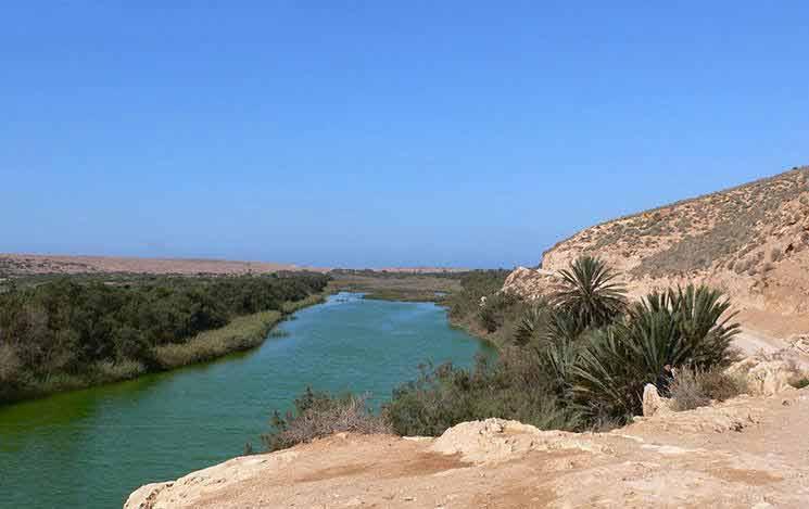 Trois morts et douze portées disparues suite aux crues de l'Oued Tamsourt