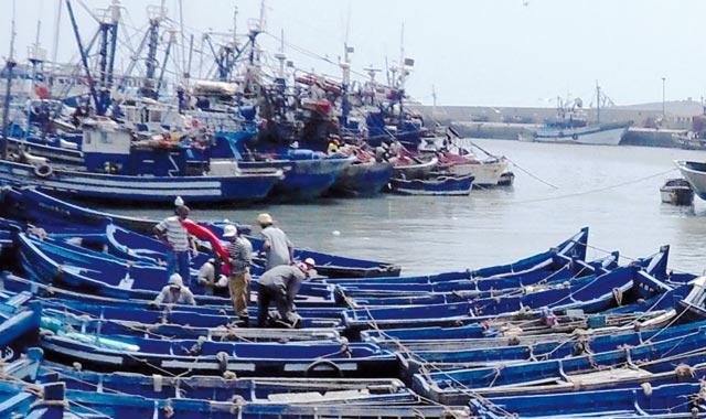 Pêche côtière et artisanale : Hausse de 7% des débarquements à fin novembre 2014
