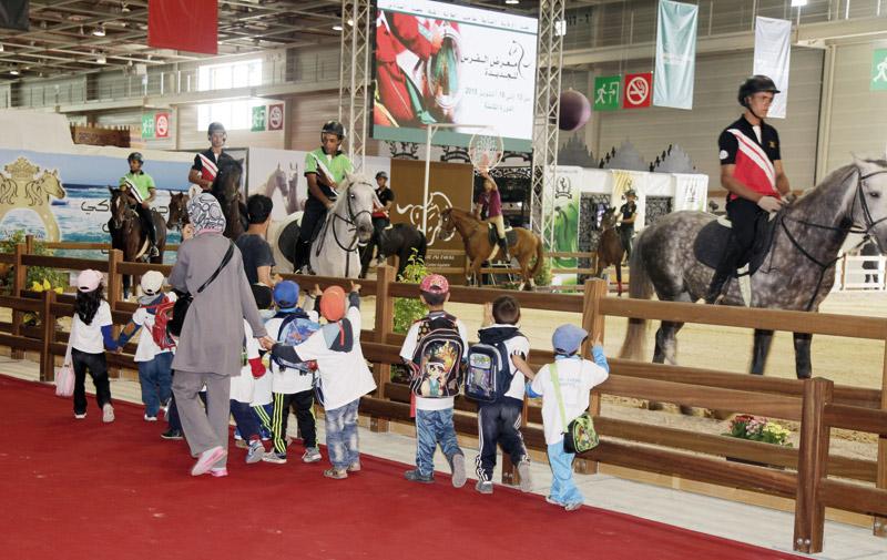 8ème édition du Salon du cheval 2015 d'El Jadida: Une clôture en beauté