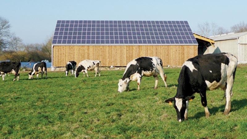 Agriculture : Une enveloppe de  400 mDh pour le pompage solaire