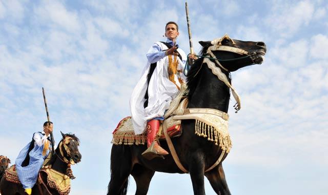 Derniers préparatifs pour le Salon du cheval  d'El Jadida