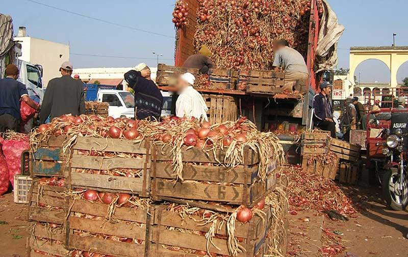 Avec des prix atteignant 10 dirhams le kilo: Les oignons nous font pleurer !