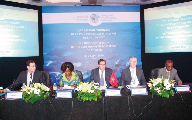 Préservation des ressources halieutiques :  Le Maroc mobilise l'Afrique