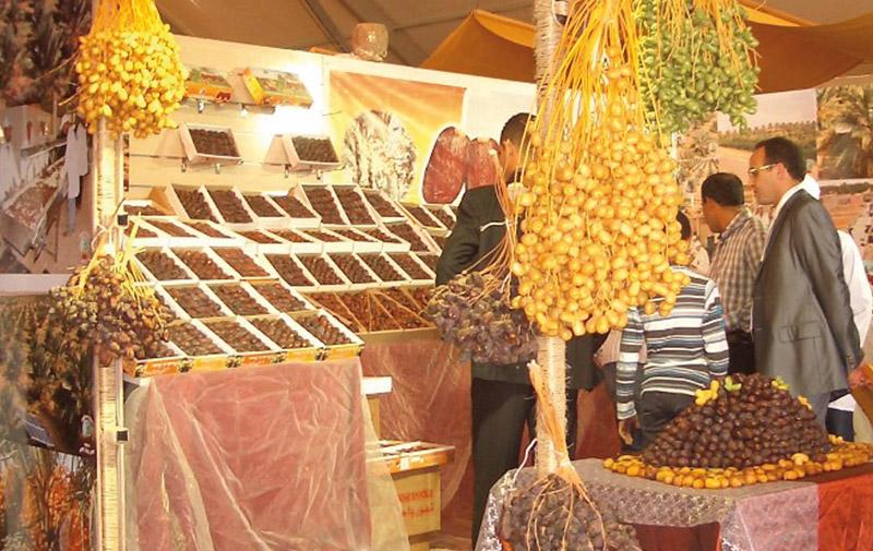 La production phoenicicole atteint un record historique: 117.000 tonnes de dattes en 2015
