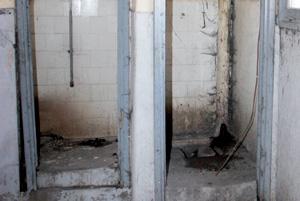 2008, «l'année des toilettes», selon l'ONU