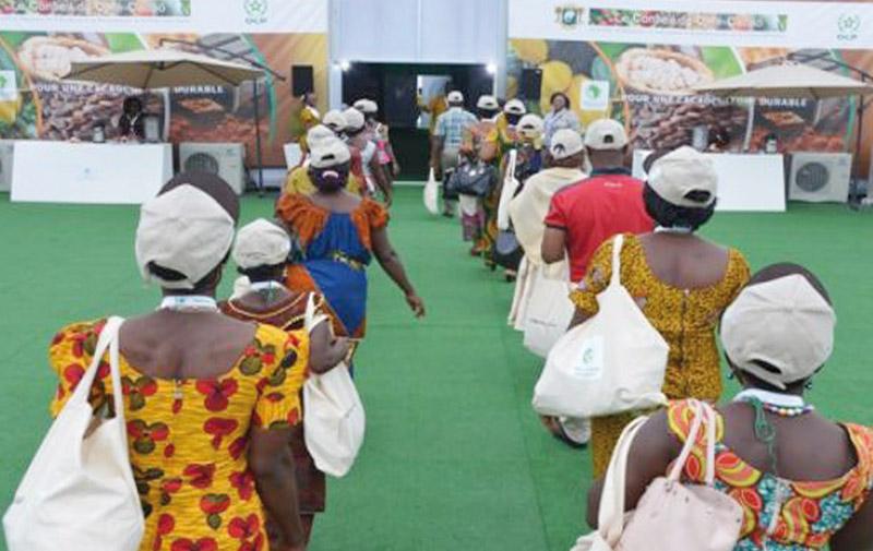Production de cacao: Quelque 1.200 ivoiriens profitent  de l'expertise d'OCP