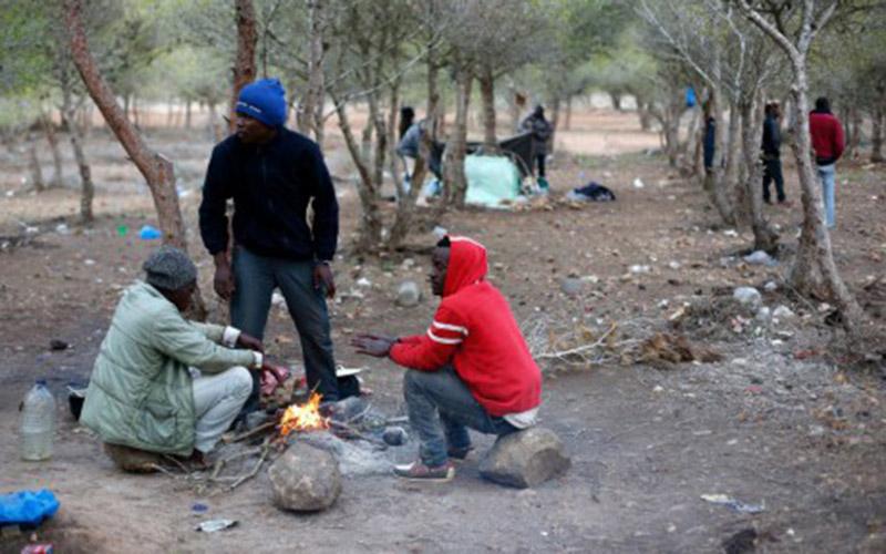 Emigration clandestine: Evacuation de la forêt de Gourougou
