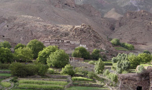 Ouarzazate : Transhumance et biodiversité à l'ordre du jour