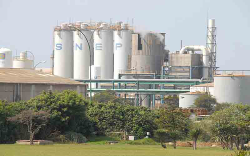 Plus d'1 million d'actions de la SNEP aux enchères