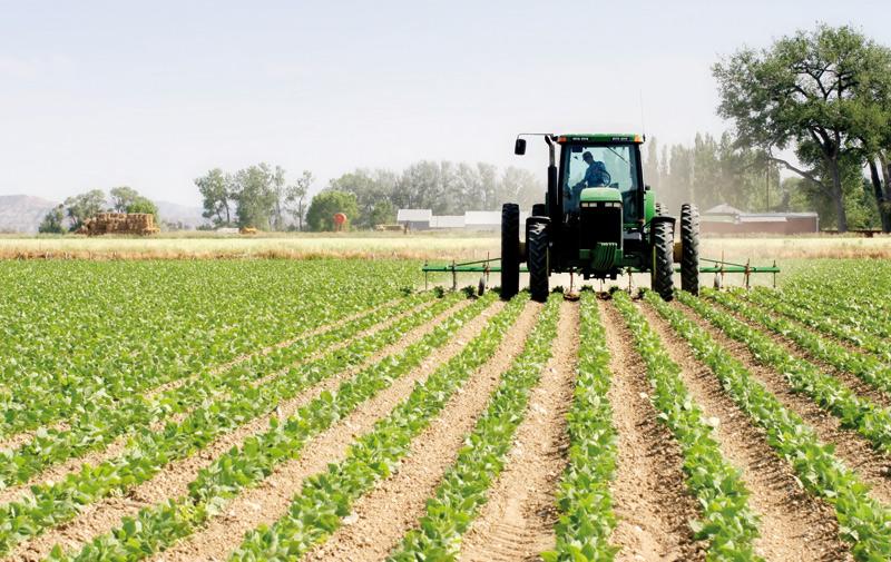 Suivi de l'évolution de la campagne agricole 2015-2016: Le retard des pluies n'est pas critique !