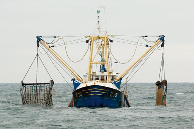 Accord de pêche: 126 bateaux européens investiront les eaux marocaines