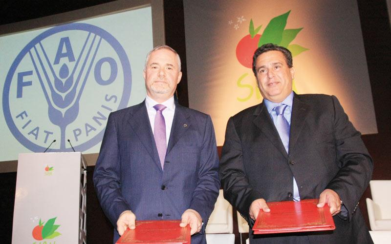 La sécurité alimentaire selon la FAO: La stratégie marocaine au service  de l'Afrique