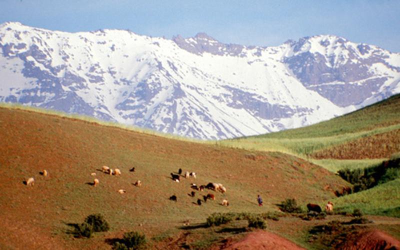 Tadla-Azilal : Le Géoparc du M'Goun labellisé par l'UNESCO