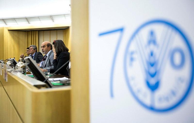 CSA-Rome: Le Maroc présente son modèle de lutte contre les dérèglements climatiques
