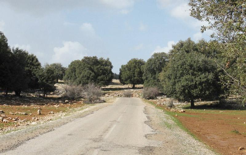 36 milliards de dirhams dédiés au nouveau programme de routes rurales