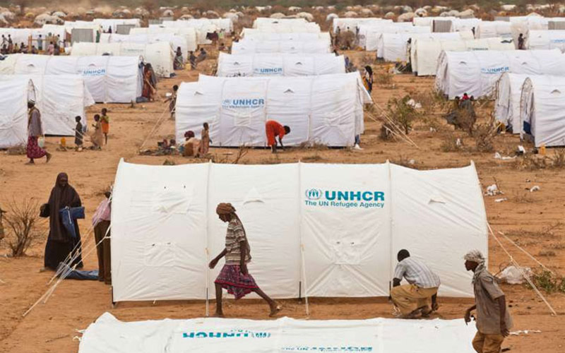 ONU : les rations alimentaires de 800.000 réfugiés réduite faute de fonds