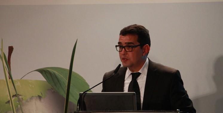 Plan Maroc Vert: L'intégration du changement climatique  a donné ses fruits