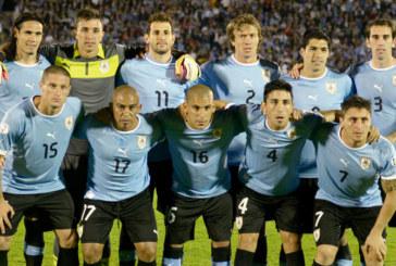 Coupe du monde 2014 : Equipe de l'Uruguay