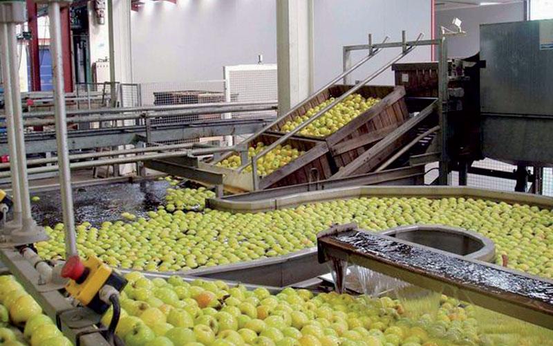 Exportations agroalimentaires: 181 millions DH de valeur perdue en une année